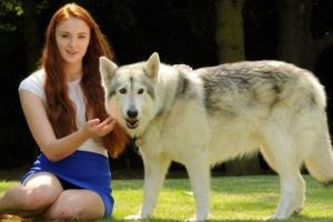 I 13 attori delle Serie Tv che hanno degli animali fantastici in casa