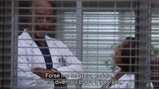 Grey's Anatomy - bailey webber