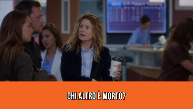 Grey's Anatomy - Meredith Meme