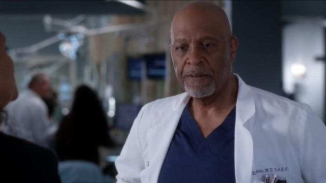 Grey's Anatomy Webber
