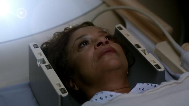 Grey's Anatomy - Catherine Fox